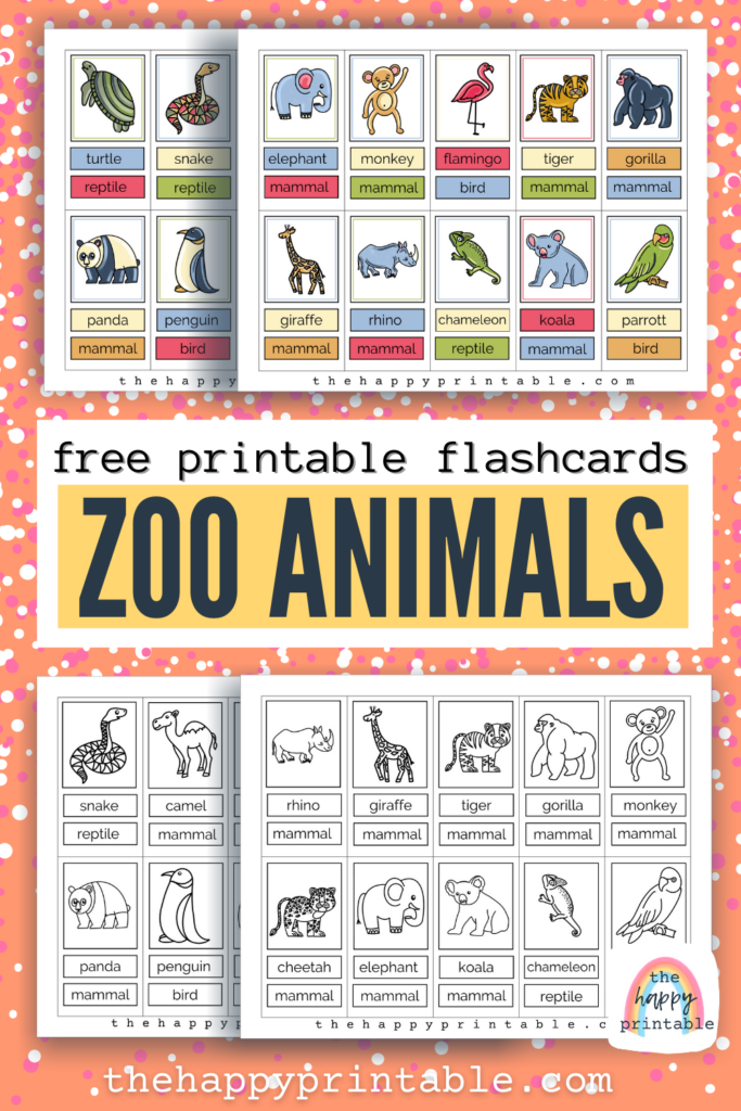 20 hand drawn free printable zoo animal flashcards in black and white and full color
